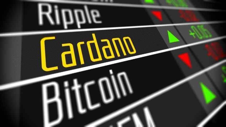 Cardano Developers
