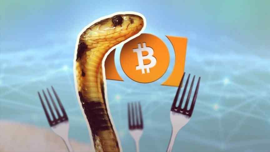 cobra, three forks, bitcoin logo in orange, turquoise blurry background