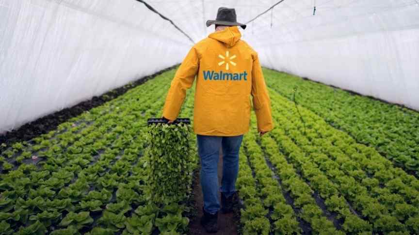 Walmart blockchain food traceability