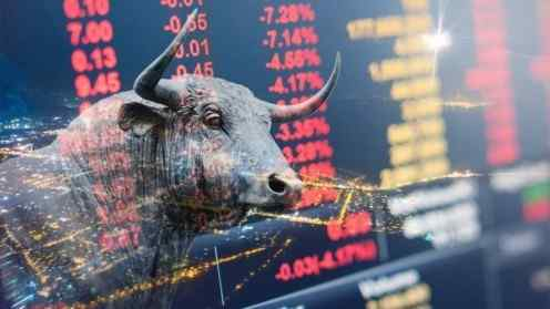 Bakkt cryptocurrency bull