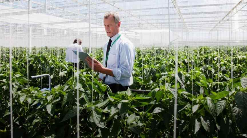 man in suit holding note pad inside greenhouse filled with plants
