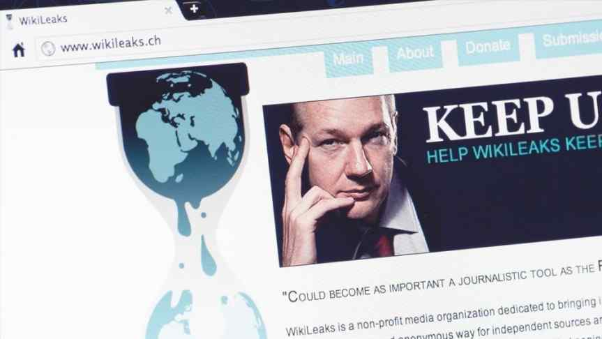 A secreenshot of wikileaks.ch