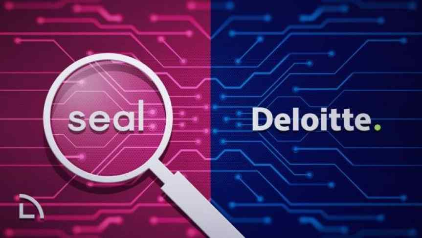 Seal Network and Deloitte logos with a blockchain scheme in the background.